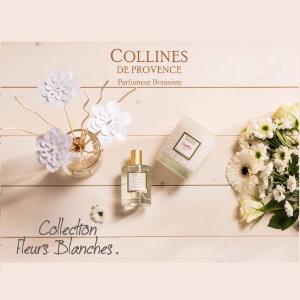 Fleurs Blanches – Collines de Provence