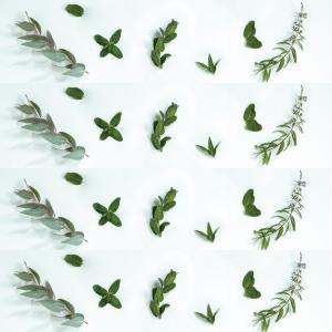 Purifiant – Collines de Provence