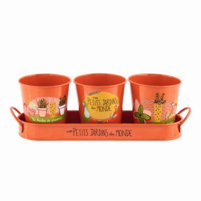 Set de 3 cache-pots + plateau - PAUL Mes petits jardins - Derrière la porte